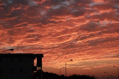 sunset11